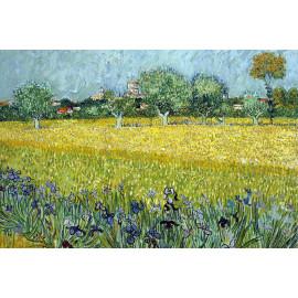 Vincent van Gogh (5010.1005)