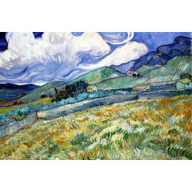 Vincent van Gogh (5010.1006)