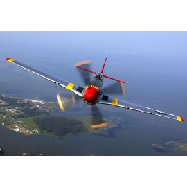 Propeller Vliegtuig (5035.2001)