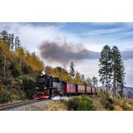 Trein (5035.3002)