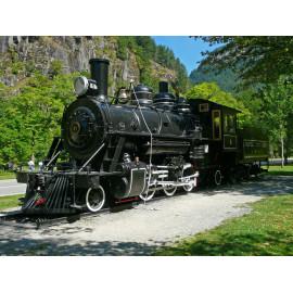 Oude Trein (5035.3003)