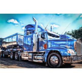 Truck (5035.4001)