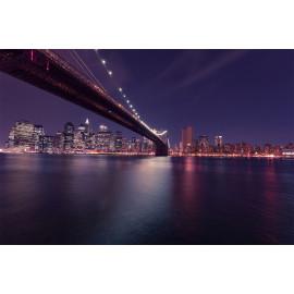 new-york-city (5040.1016)