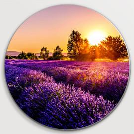 Lavendel veld by sunset (5020.1021)