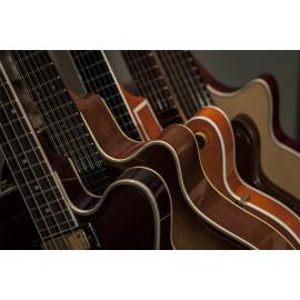 Guitar (5030.1021)