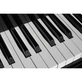 Piano (5030.1025)