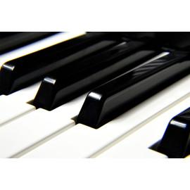 Piano (5030.1027)