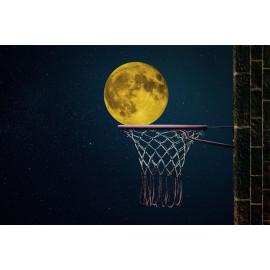 Basket met Maan (5030.1029)