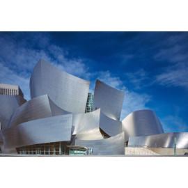 Walt Disney Center (5040.1039)