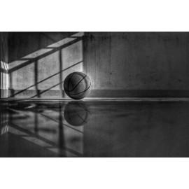 Basketbal (5030.1031)