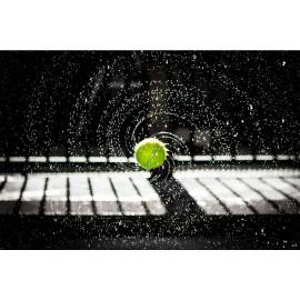 Tennisbal (5030.1042)