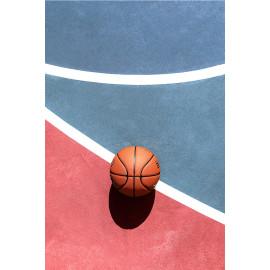 Basketbal (5030.1055)