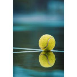 Tennisbal (5030.1058)
