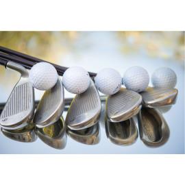 Golfclubs (5030.1062)