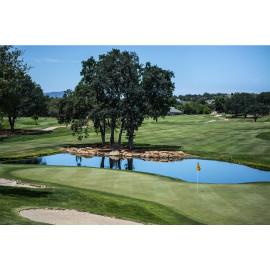 Golf Court (5030.1063)