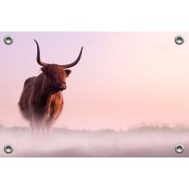 Tuinposter © Karel Ton - Hooglander - Longhorn (6215.6120)