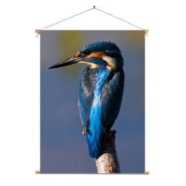 Textielposter © Ron Entius - ijsvogel (6217.1020)