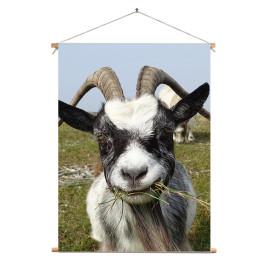 Textielposter © Brenda Boom - Wilde Geit op Terschelling (6218.0749)