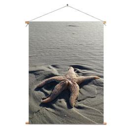 Textielposter © Brenda Boom - Zeester op Terschelling (6218.1546)