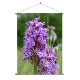 Textielposter © Brenda Boom - Wilde Orchidee gefotografeerd op Terschelling (6218.1856)