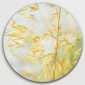 Muurcirkel Geel gras...