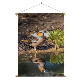 Textielposter © Dini Liefferink - Appelvink met grote dorst - Veluwe (6219.1001)