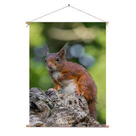 Textielposter © Dini Liefferink - Rode eekhoorn op de uitkijk (6219.1013)