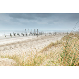 Wanddecoratie © Ruud Engel Photography - Palendorp Petten (6225.1015)