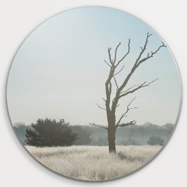 Muurcirkel © Ruud Engel Photography - Kampina Winter Oisterwijk (6225.1031)