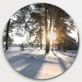 Muurcirkel © Ruud Engel Photography - Kampina Winter Oisterwijk (6225.1032)