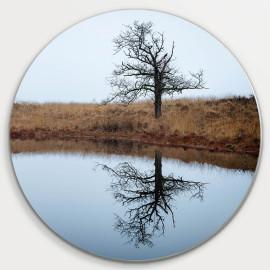 Muurcirkel © Ruud Engel Photography - Lonely Tree Kampina (6225.1036)