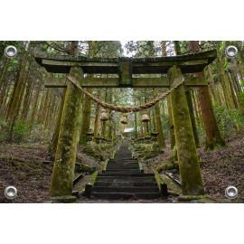 Tuinverruimer  - Trappen in japans bos (5054.1027)