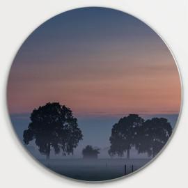 Muurcirkel © René Groenendijk - Bomen in de Mist (6226.1048)
