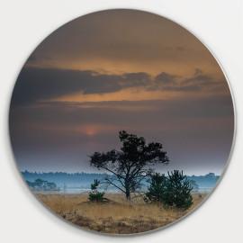 Muurcirkel © René Groenendijk - Eenzame Boom op de Heide (6226.1061)