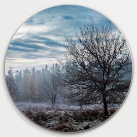 Muurcirkel © René Groenendijk - Open veld Veluwe in de Winter (6226.1077)