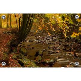Tuinposter © René Groenendijk - Ardennen in de herfst (6226.1042)