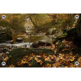Tuinposter © René Groenendijk - Ardennen in de herfst (6226.1043)