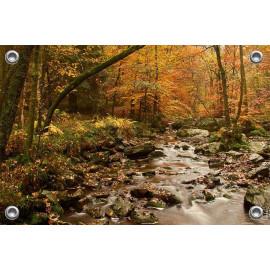 Tuinposter © René Groenendijk - Ardennen in de herfst (6226.1044)