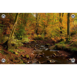 Tuinposter © René Groenendijk - Ardennen in de herfst (6226.1045)