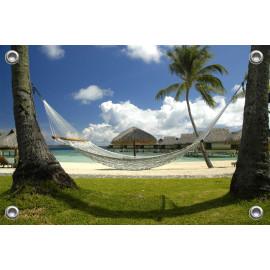 Tuinposter Palmbomen met Hangmat (5051.3002)