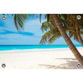 Tuinposter Strand met Palmboom (5051.3003)