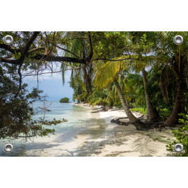 Tuinposter Strand met Palmbomen (5051.3008)