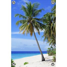 Tuinposter Strand met Palmboom (5051.3009)