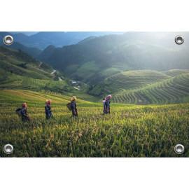 Tuinposter Landschap Azië (5053.3006)