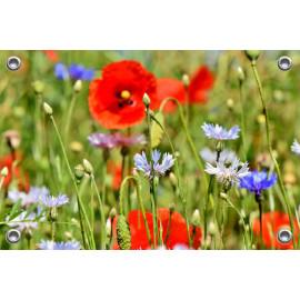 Tuinposter-Schuttingposter Veldbloemen (5020.3016)