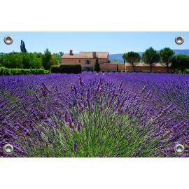 Tuinposter-Schuttingposter Lavendelveld Provence (5020.3034)