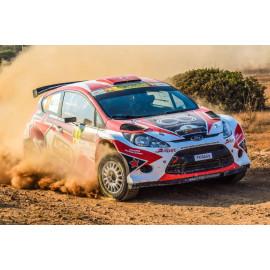 Wanddecoratie Rally Raceauto (5035.3015)