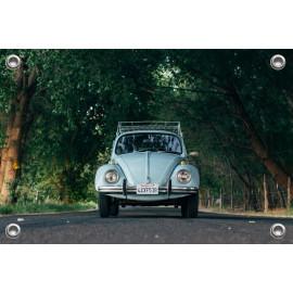 Tuinposter Auto Kever (5035.3036)