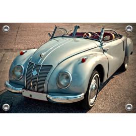 Tuinposter Auto Oldtimer (5035.3038)