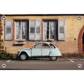 Tuinposter Auto Lelijk Eend (5035.3041)